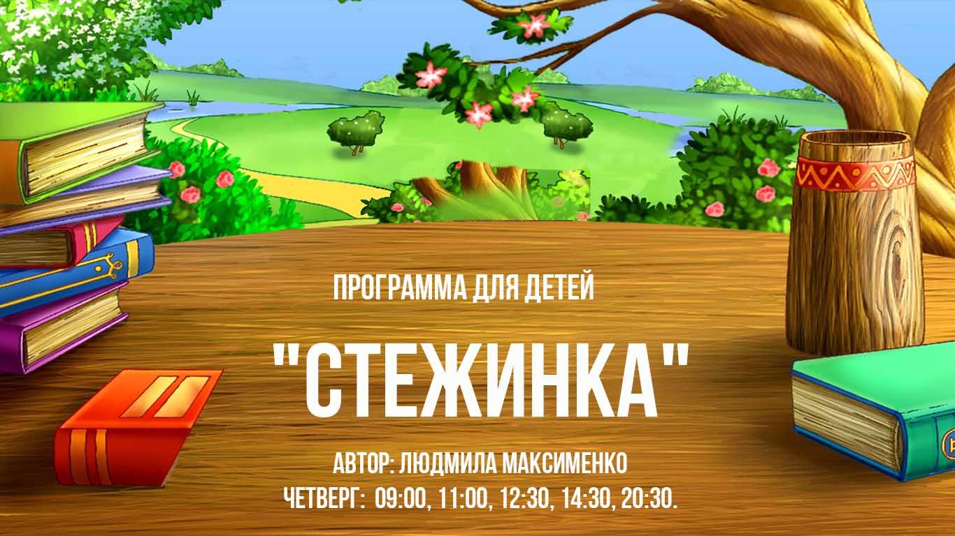 "Программа ""Стежинка"""